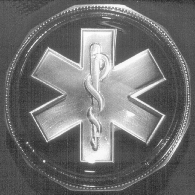Pewter EMS Symbol Paperweight