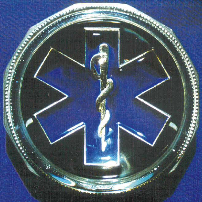 White Gold and Blue Enamel EMS Symbol Paperweight